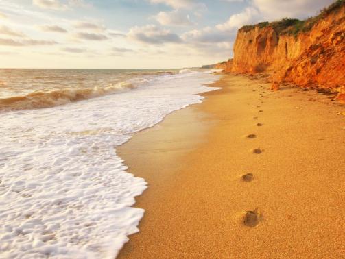 traces-on-th-sea-shore-W38J2DW